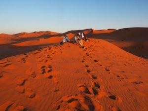 Un circuit entre villes et désert au maroc