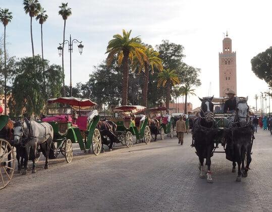 Excursions Maroc